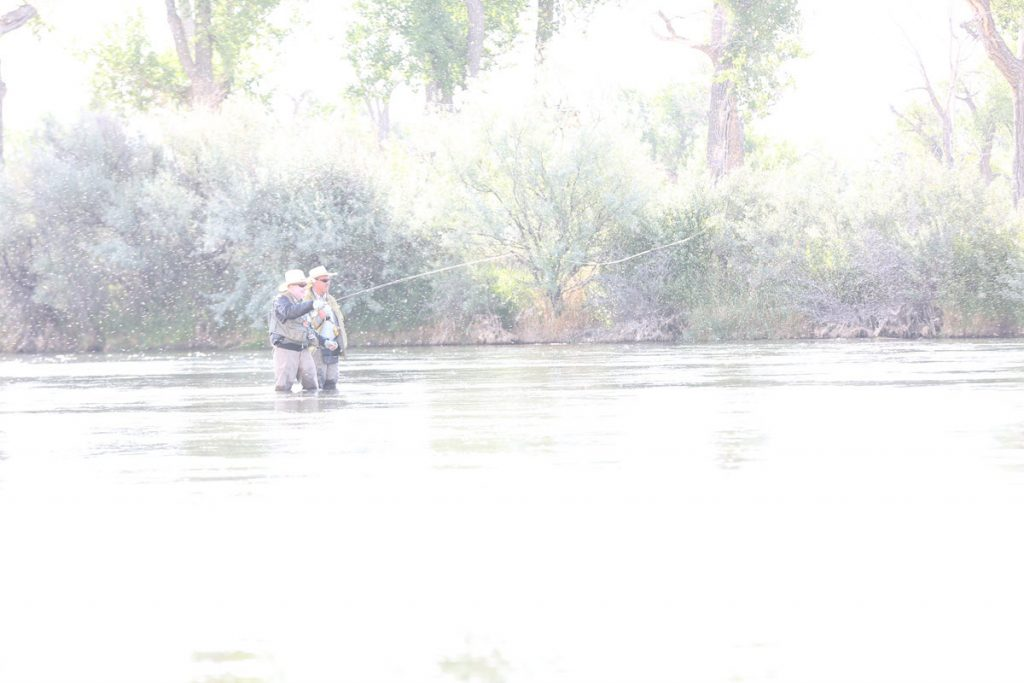 Fly fishing on the Bighorn River